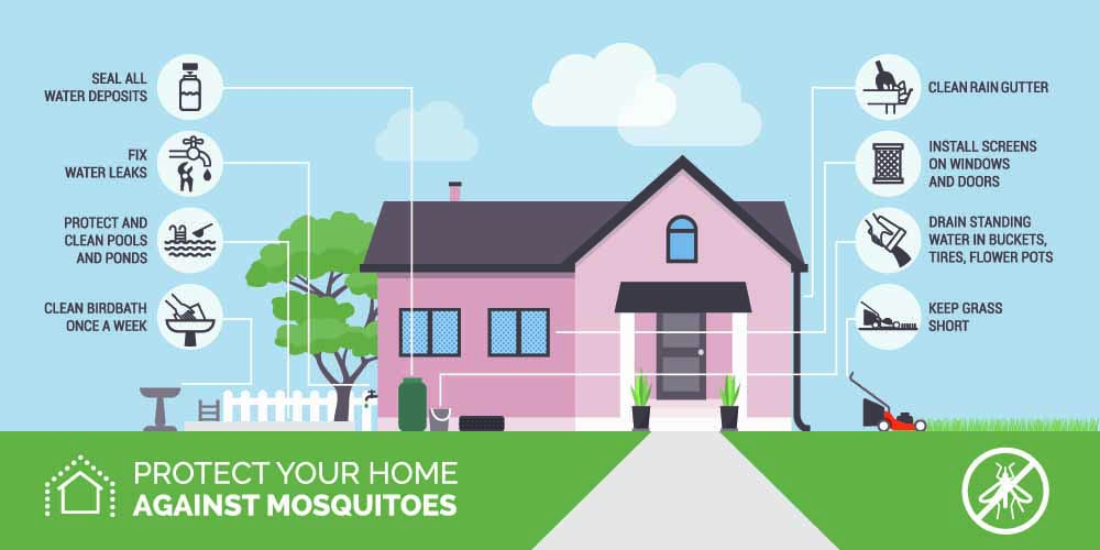 mosquito home prevention