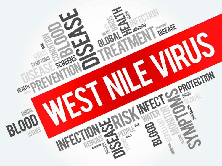 West Nile Viruas